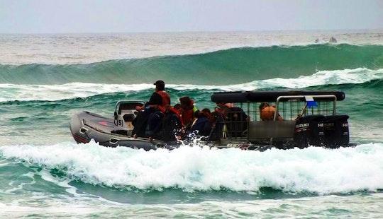 Shark Diving Boat In Umkomaas