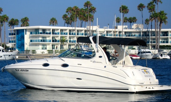 Captained Only Charter On 31' Sea Ray Powerboat