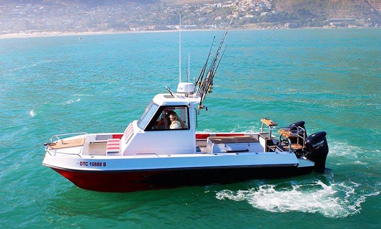 Enjoy Fishing in Hout Bay, Western Cape on Cuddy Cabin