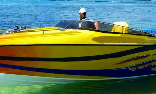Power Boat Tours In Quatre Cocos, Mauritius