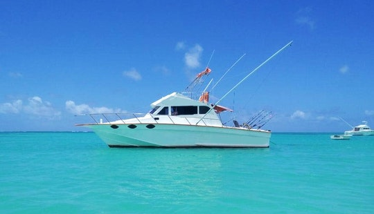 Le Performant  2 Fishing Boat In Mauritius