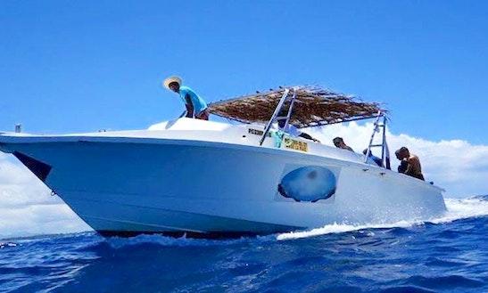 Enjoy Diving Courses & Snorkeling Trips In Rivière Du Rempart, Mauritius