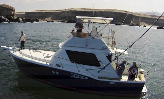 Inboard Propulsion Rental In Antofagasta