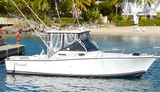 Charter This 27 Footer For An Epic Fishing Trip In Bridgetown, Barbados