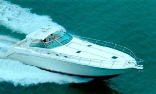 Enjoy Fishing In Acapulco, Mexico On Sea Ray 55 Power Mega Yacht