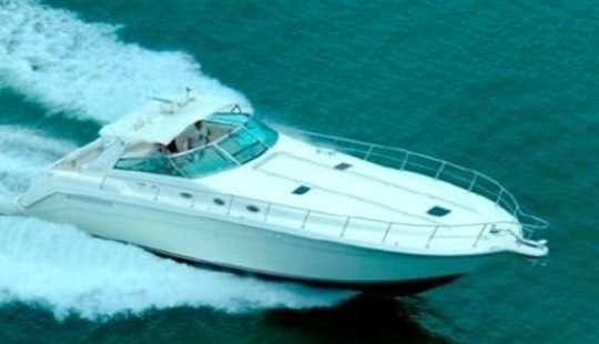 Enjoy Fishing In Acapulco, Mexico On Sea Ray 55 Power Mega Yacht