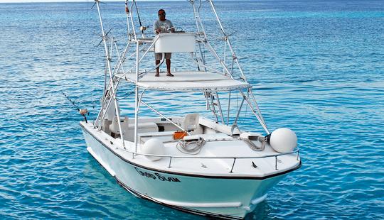 32' Island Sport Fisherman In Cozumel, Mexic