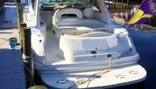 41' Searay Sunseeker Motor Yacht Charter In Destin, Florida