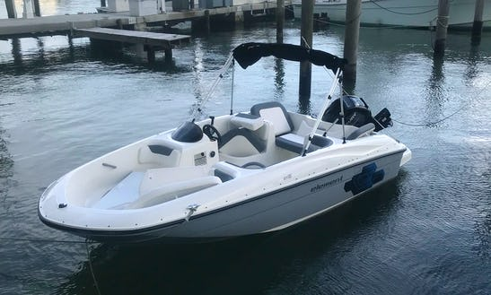 Drive A Bayliner Element 16 For 2, 4 Or 8 Hours Rental  In Miami, Fl