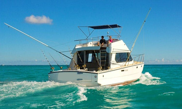 Enjoy Fishing in Grand Baie, Mauritius on Sport Fisherman