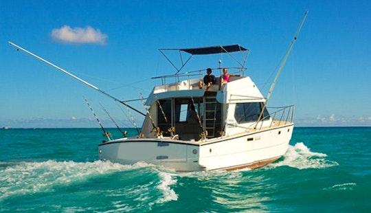 Enjoy Fishing In Grand Baie, Mauritius On Sport Fisherman