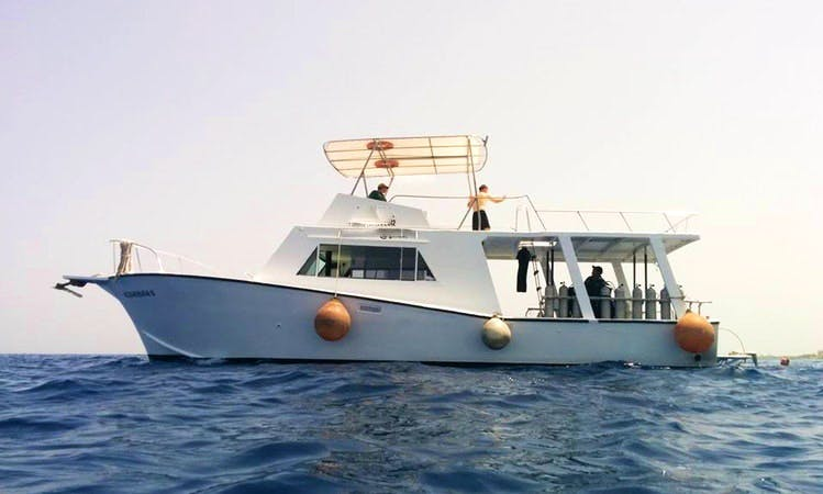 Diving and Snorkeling Tour in Conzumel