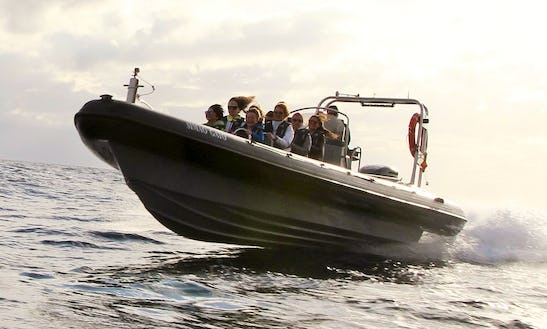 Charter A Rigid Inflatable Boat In Calheta, Portugal