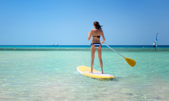 Enjoy Stand Up Paddleboard Rentals In Caicos Islands, Turks And Caicos Islands