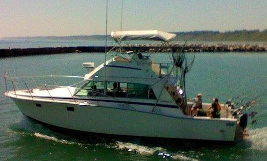 Fishing Charter On 38' Bertram Sportsfishing Yacht In Port Washington, Wisconsin