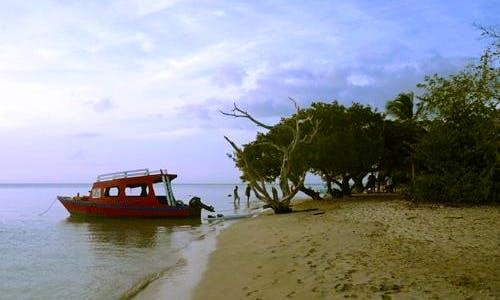 Glass Bottom Boat Tour in Tobago Buccoo Reef