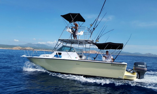 Enjoy Fishing In Cabo San Lucas, Mexico On 28' Cuddy Cabin