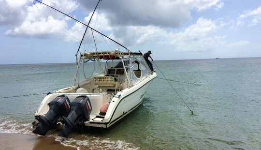 Enjoy Fishing In Basseterre, Saint Kitts And Nevis On 32' Celica Cuddy Cabin