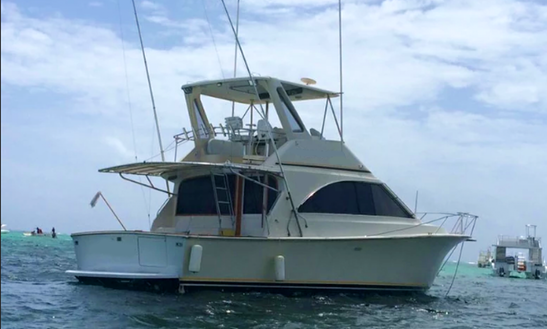 Exciting Sport Fishing Trip For 6 People In Punta Cana, Dominican Republic On