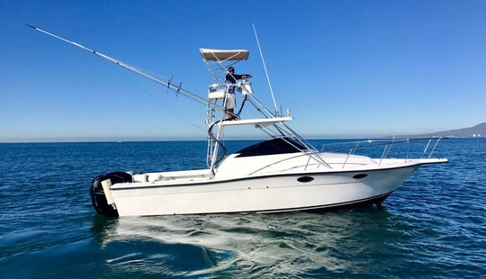 Fishing Charter 28ft