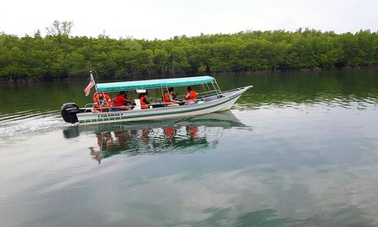 Charter A River Boat In Kuala Terengganu, Malaysia