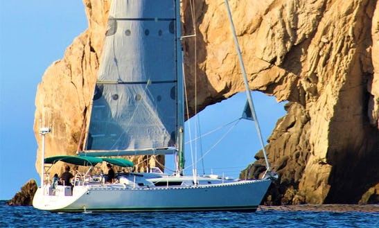 Daysailer Private Charter Rental In Cabo San Lucas
