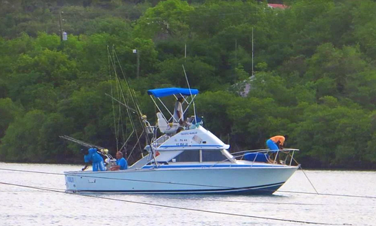 Enjoy Fishing In Saint Mary, Antigua And Barbuda On Sport Fisherman