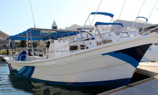 Whale Watching Tour Boat  In Cabo San Lucas