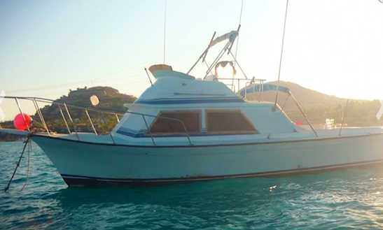 Fishing charters in san jose del cabo for San jose del cabo fishing charters