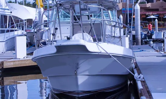 Enjoy Fishing In Baja California Sur, Mexico On 26' Super Panga Center Console
