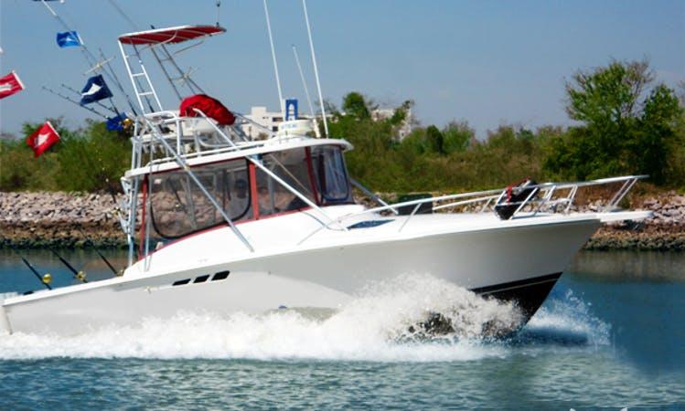 "31ft ""Go Tequilla"" Sport Fisherman Charter in Mazatlán, Mexico"