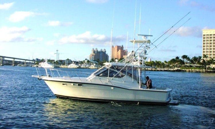 """Enjoy 38' Hatteras Express """"Chubasco VI"""" Yacht In Nassau, New Providence"""