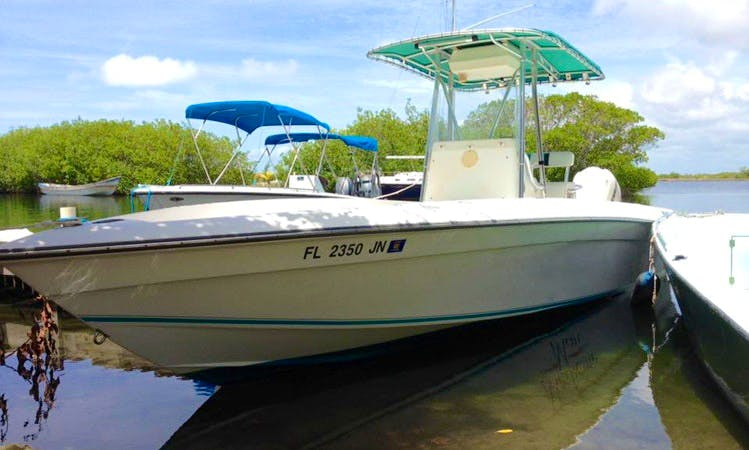 Enjoy Fishing in Placencia, Belize on Center Console