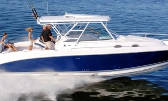 Charter This 38' Donzi Power Yacht And Cruise Isla Mujeres And Cancún