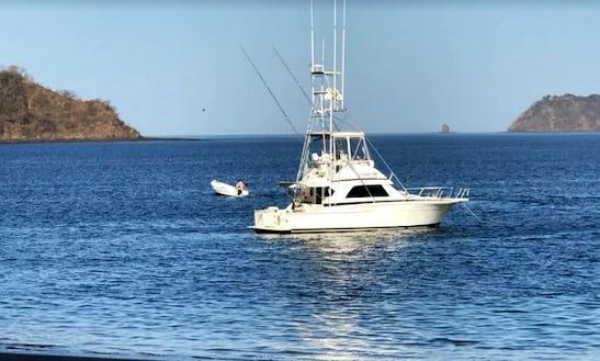 Enjoy Fishing In Mogán, Spain On Sport Fisherman