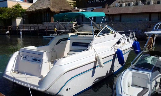 Private Charter To Isla Mujeres On 25' Donzi Cuddy Cabin Yacht