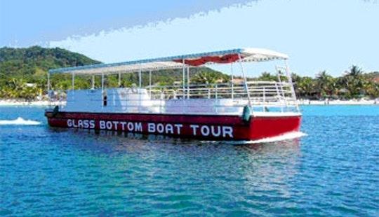 Glass-bottom Boat Tour In Coxen Hole, Honduras