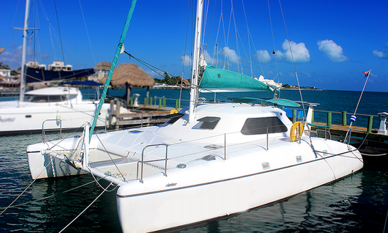 Explore Cancun And Isla Mujeres On 35ft