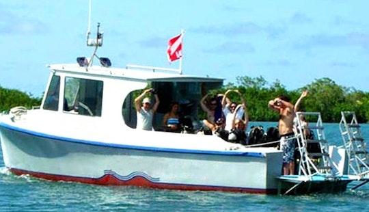 Dive Boat Charter In Islas De La Bahía, Honduras