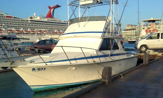 Explore Oranjestad, Aruba On Sport Fisherman Charter