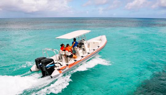 Charter A Rigid Inflatable Boat In Oranjestad, Aruba