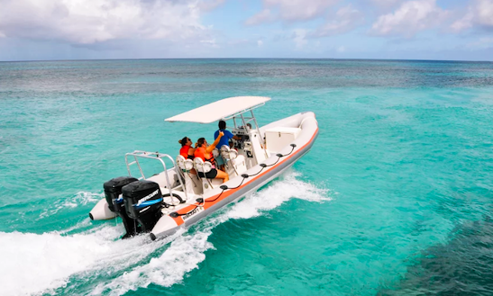 Charter A Rigid Inflatable Boat In Oranjestad, Aruba