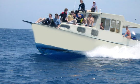 Diving Boat Charters In, Honduras