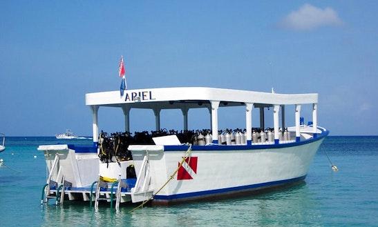 40' Dive Boat In Roatan