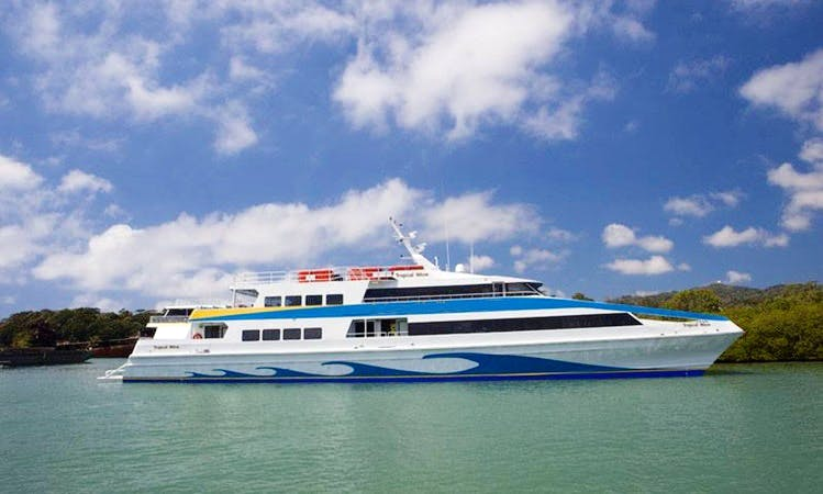 Power Catamaran Trips In Dixon Cove