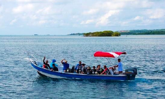 Boat Diving Trips  Certified Courses In San Andres Island