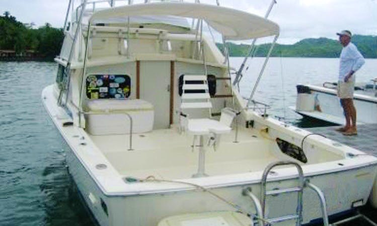 Book a Sport Fishing Charter on 28' Bertram Yacht in Golfito, Costa Rica