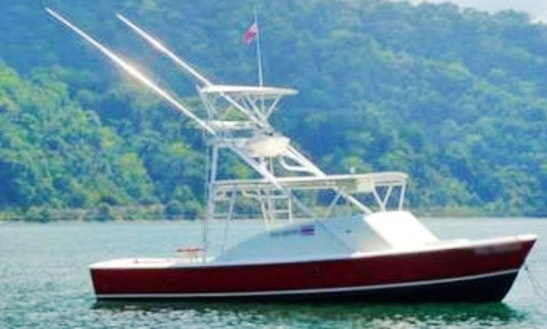Book An Exciting Sport Fishing Charter On