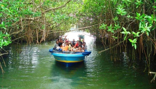 Rent A Powerboat Tour In Aluthgama, Sri Lanka