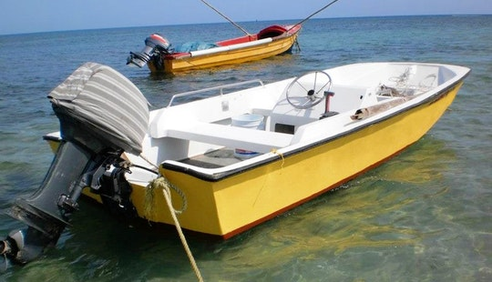 Enjoy Fishing In Falmouth, Jamaica On Center Console